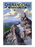 Shenandoah National Park, Virginia - Stony Man Cliffs View Posters af  Lantern Press