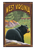 West Virginia - Black Bear in Forest Art by Lantern Press 