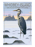 Whidbey Island, Washington - Blue Heron Prints by  Lantern Press