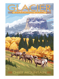 Chief Mountain and Big Horn Sheep - Glacier National Park, Montana Pôsters por Lantern Press