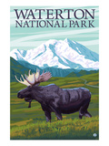Waterton National Park, Canada - Moose and Mountain Posters by  Lantern Press