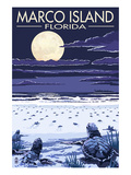 Marco Island, Florida - Baby Sea Turtles Poster by  Lantern Press
