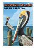 Kiawah Island, South Carolina - Pelicans Affiche par  Lantern Press