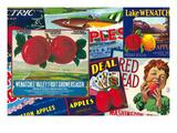 Wenatchee Apple Labels Montage Prints by  Lantern Press