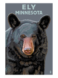Ely, Minnesota - Bear Up Close Print by  Lantern Press