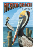 Mexico Beach, Florida - Brown Pelicans Affiche par Lantern Press