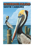 Seabrook Island, South Carolina - Pelicans Posters by Lantern Press