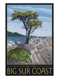 Big Sur Coast, California - Lone Cypress Tree Posters by Lantern Press