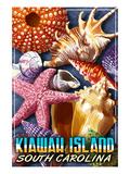 Kiawah Island, South Carolina - Shell Montage Prints by  Lantern Press