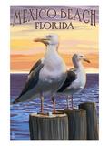 Mexico Beach, Florida - Sea Gulls Poster par  Lantern Press