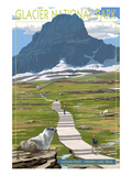 Logan Pass - Glacier National Park, Montana Poster by  Lantern Press