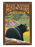 Blue Ridge Mountains, Virginia - Bear in Forest Print by Lantern Press 