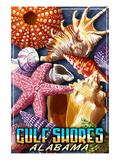 Gulf Shores, Alabama - Shells Montage Kunstdrucke von  Lantern Press