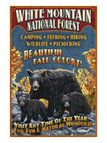 White Mountains, New Hampshire - Black Bear Prints by Lantern Press