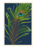 Peacock Feather Art par  Lantern Press