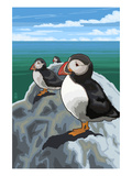 Puffins - Atlantic Posters par  Lantern Press