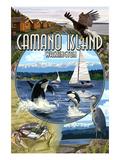 Camano Island, Washington - Montage Posters by  Lantern Press