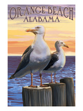 Orange Beach, Alabama - Seagulls Prints by  Lantern Press