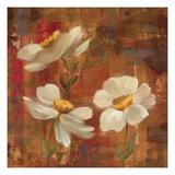 Floral Trio I Giclee Print by Silvia Vassileva