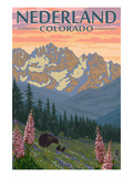 Nederland, Colorado - Bears and Spring Flowers Posters by Lantern Press 