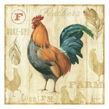 Joli Rooster II Art by Lisa Audit