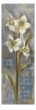 Early Spring II Giclee Print by Silvia Vassileva
