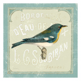 Parisian Bird I Giclee Print by Sue Schlabach