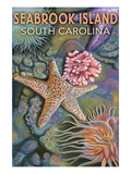 Seabrook Island, South Carolina - Tidepool Posters by  Lantern Press