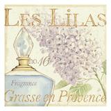 Fleurs and Parfum IV Premium Giclee Print by Daphne Brissonnet