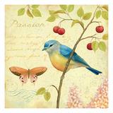 Garden Passion IV Premium Giclee Print by Daphne Brissonnet