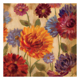 Rainbow Dahlias Crop III Premium Giclee Print by Silvia Vassileva