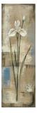 Spring Grace IV Giclee Print by Silvia Vassileva