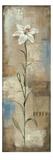 Spring Grace I Prints by Silvia Vassileva