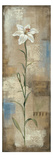 Spring Grace I Giclee Print by Silvia Vassileva