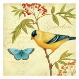 Garden Passion II Premium Giclee Print by Daphne Brissonnet