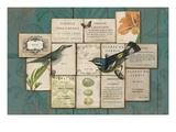 Birds of the Garden Premium Giclee-trykk av Sue Schlabach