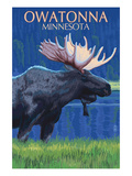 Owatonna, Minnesota - Moose at Night Prints by Lantern Press