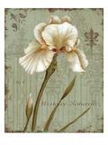 Histoire Naturelle I Print by Daphne Brissonnet