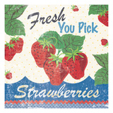 Vintage Fruit Square I Giclee Print by Wild Apple Portfolio
