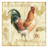 Joli Rooster I Posters by Lisa Audit