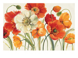Poppies Melody I Premium Giclee Print by Lisa Audit