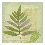 Breathe Prints by Hugo Wild