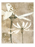 Pencil Floral II Premium Giclee Print by Avery Tillmon