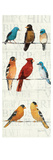 The Usual Suspects Panel II Premium Giclee Print by Avery Tillmon