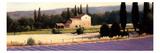 Lavender Fields Panel II Stampa giclée premium di Wiens, James