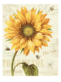 Under the Sun I Premium Giclee Print by Lisa Audit