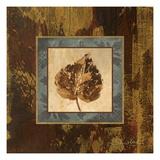 Autumn Leaf Square I Premium Giclee Print by Silvia Vassileva
