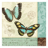 Butterfly Patchwork II Premium Giclee Print by  Pela