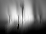 Lookout Photographic Print by Josh Adamski