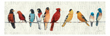 The Usual Suspects Premium Giclee Print by Avery Tillmon